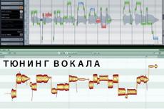Тюн вокала, выравнивание по нотам и ритмически 23 - kwork.ru