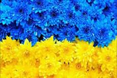 25 безанкорных ссылок с украинских форумов. Крауд маркетинг 4 - kwork.ru