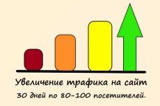 3000 посетителей НА САЙТ ЗА 2 ДНЯ ИЗ поисковиков, ПО ключевым запросам 7 - kwork.ru