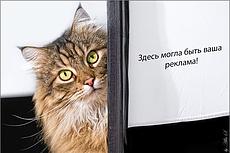 Размещение вашего баннера на очень популярном Московском сайте 21 - kwork.ru