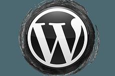 Магазин-каталог без корзины на wordpress 25 - kwork.ru