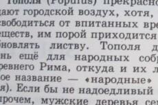 Продающий текст СЕО 22 - kwork.ru