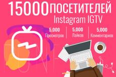 На 10 дней -Увеличу кол-во уникальных посетителей от 20 до 500 в сутки 29 - kwork.ru