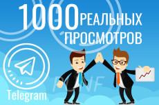 17000 уникальных посетителей на сайт с поисковых систем за 24 часа 21 - kwork.ru