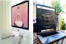 Создам интернет-магазин на CMS OpenCart 80 - kwork.ru