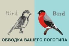 Сделаю качественный векторный рисунок 17 - kwork.ru