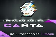 Персональный помощник 7 - kwork.ru
