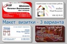 визитка 17 - kwork.ru