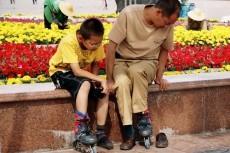 разрабатываю идеи по изменению положения бездомных животных в городе с практикой 8 - kwork.ru