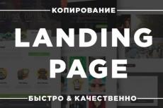 Научу копировать сайты 14 - kwork.ru