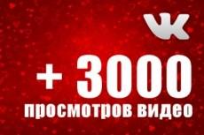6000 просмотров видео в ВКонтакте 7 - kwork.ru