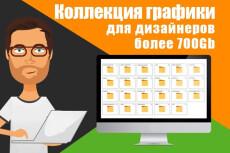 Коллекция графики для вебмастеров и дизайнеров 2500 Гб 105 - kwork.ru