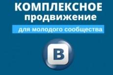 Рекламная кампания в РСЯ Яндекса 13 - kwork.ru