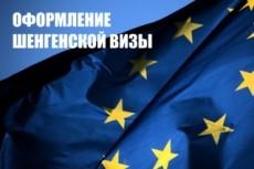 Заполню анкету на визу в любую страну Шенгенского соглашения 11 - kwork.ru