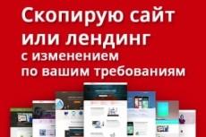 Скопировать лендинг, одностраничный сайт 48 - kwork.ru