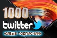 Переведу с английского на русский язык Premium Wordpress тему 28 - kwork.ru