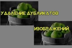 Найду 120 качественных фотографий с иностранных сайтов 159 - kwork.ru