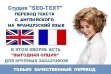 Перевод текста с английского и на английский 11 - kwork.ru