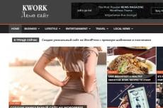 создам сайт на WordPress с премиум-шаблоном и плагинами 10 - kwork.ru