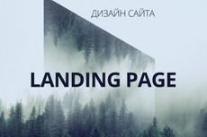 Красочный дизайн экрана вашего сайта, Landing Page 13 - kwork.ru