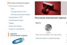 Установка СБиС (онлайн и оффлайн версии) 5 - kwork.ru