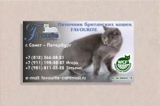 Сделаю 4 варианта визитки 8 - kwork.ru