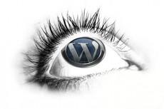 Настройка сайта WordPress 12 - kwork.ru