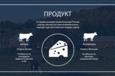 Создам Вашу собственную инфографику 15 - kwork.ru