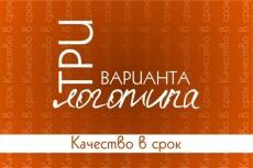 Создам три варианта логотипа на любой вкус 30 - kwork.ru