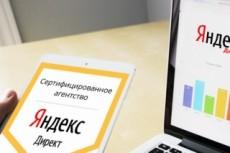 Создам качественно настроенную рекламную компанию в Яндекс Директ 23 - kwork.ru