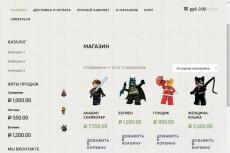 Создам автонаполняемый сайт на WordPress с Мобильной Версией 24 - kwork.ru