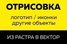 Качественная векторная отрисовка 41 - kwork.ru