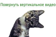 Субтитры для видео 17 - kwork.ru