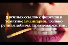 Вечные ссылки с форумов тематики отдых, развлечение 4 - kwork.ru