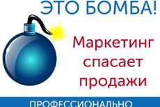 Анализ маркетинга Вашего бизнеса 26 - kwork.ru