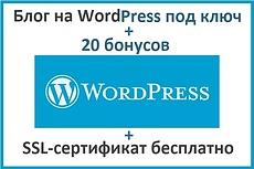 Установлю и настрою сайт/блог на Wordpress 10 - kwork.ru