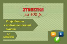 Дизайн этикетки 20 - kwork.ru