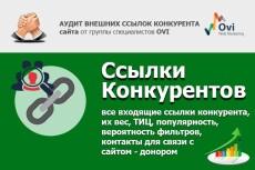 Аудит сайта 10 - kwork.ru
