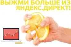 Аудит рк в Яндекс.Директ с описанием ошибок. Только факты 16 - kwork.ru