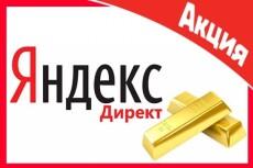 Настройка рекламной кампании в Яндекс Директ на Москву и отдельно на Россию 8 - kwork.ru