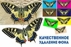Сделаю макет евробуклета 5 - kwork.ru