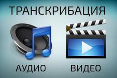 Транскрибация видео и аудиофайлов до 40 минут 20 - kwork.ru