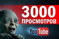 4000 просмотров на ваше видео в YouTube 17 - kwork.ru