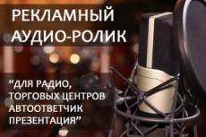 Озвучка роликов, либо рекламы 17 - kwork.ru