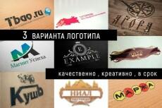 Создам 3 вида логотипа за три дня 8 - kwork.ru