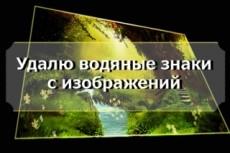Проставлю водяные знаки (watermark) на 10000 ваших изображений 11 - kwork.ru
