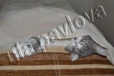 раскрашу вашу фотографию 8 - kwork.ru