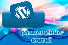 Наполнение сайта товарами на WordPress 15 - kwork.ru