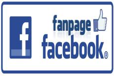 Подписчики в паблик Facebook с фильтрами. Не группа. Гарантия 10 - kwork.ru