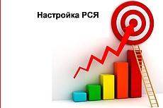 Настрою Яндекс-Директ. Аудит бесплатно! Дам ценные рекомендации по рекламе 12 - kwork.ru